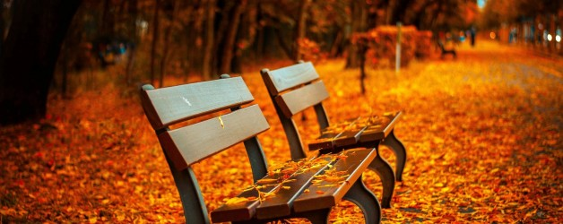 October Events in Orange County